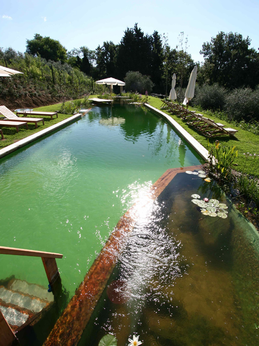 Oversize-Natural-Pool